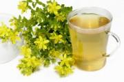 Johanniskraut und Teetasse