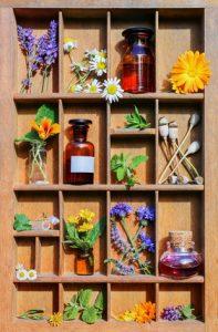 Traditionell wird Melisse zur Behandlung vieler Beschwerden eingesetzt.